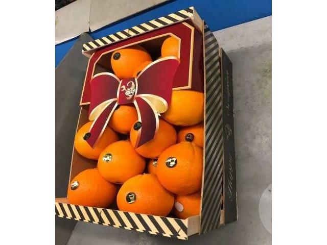 Апельсины из Испании - 2/2